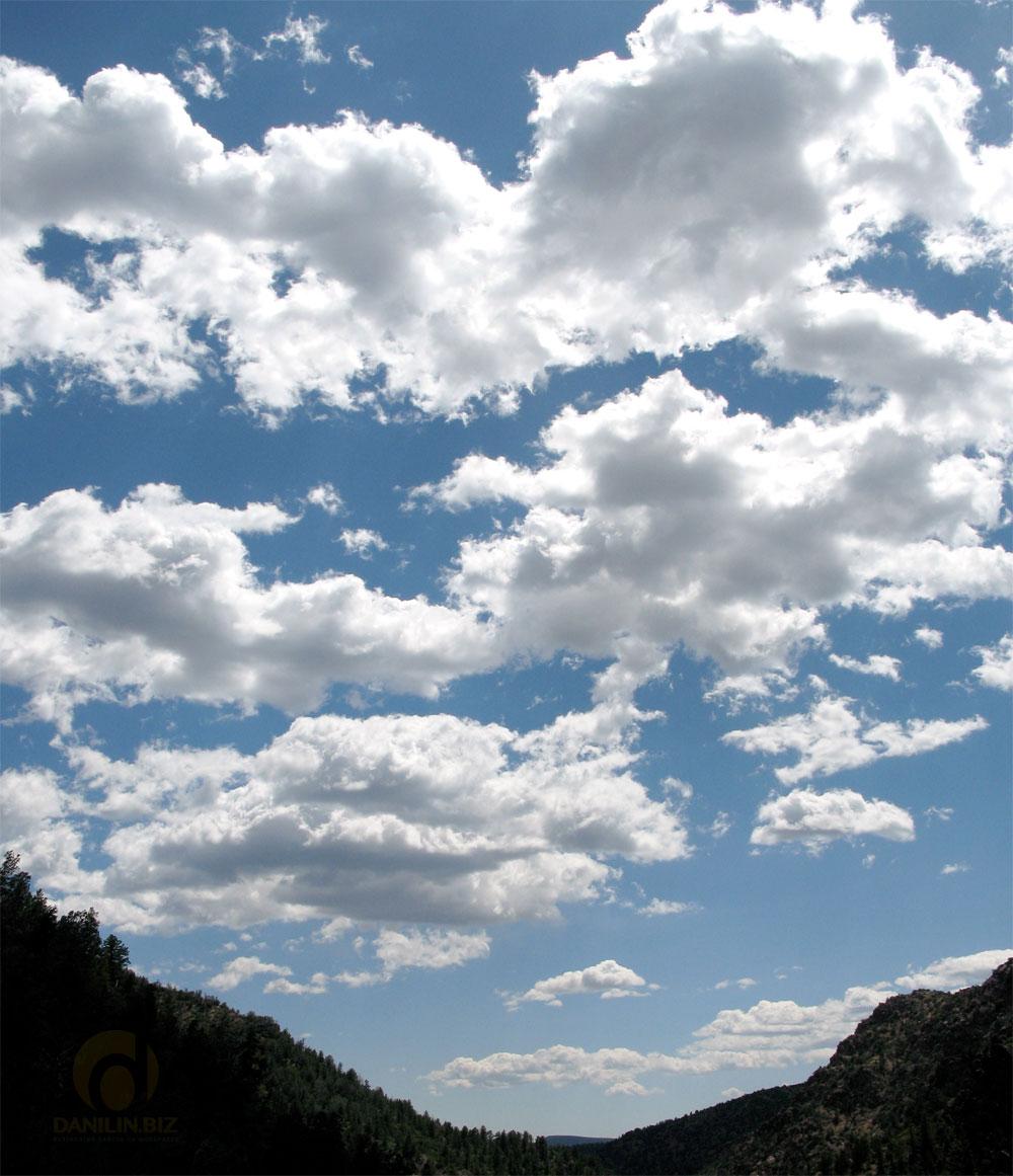 Подключаем облако Google Drive к медиабиблиотеке WordPress