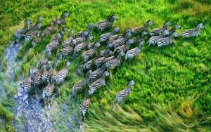 Адаптация изображений сайта под Retina-дисплеи