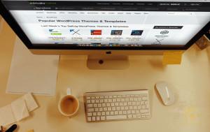 И снова о разработке сайтов на премиум-шаблонах WordPress