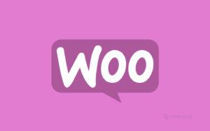 30 дополнений-бестселлеров для интернет-магазинов на WooCommerce