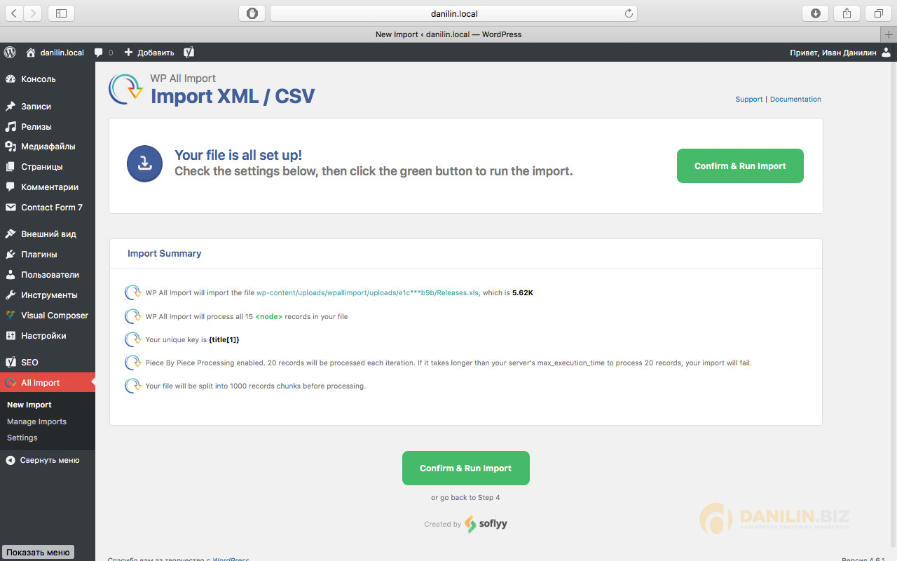 Импорт XLS в WordPress, Confirm and Run Import