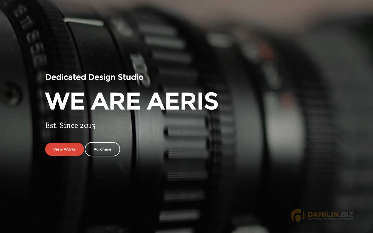 Aeris — Creative Parallax WordPress Theme