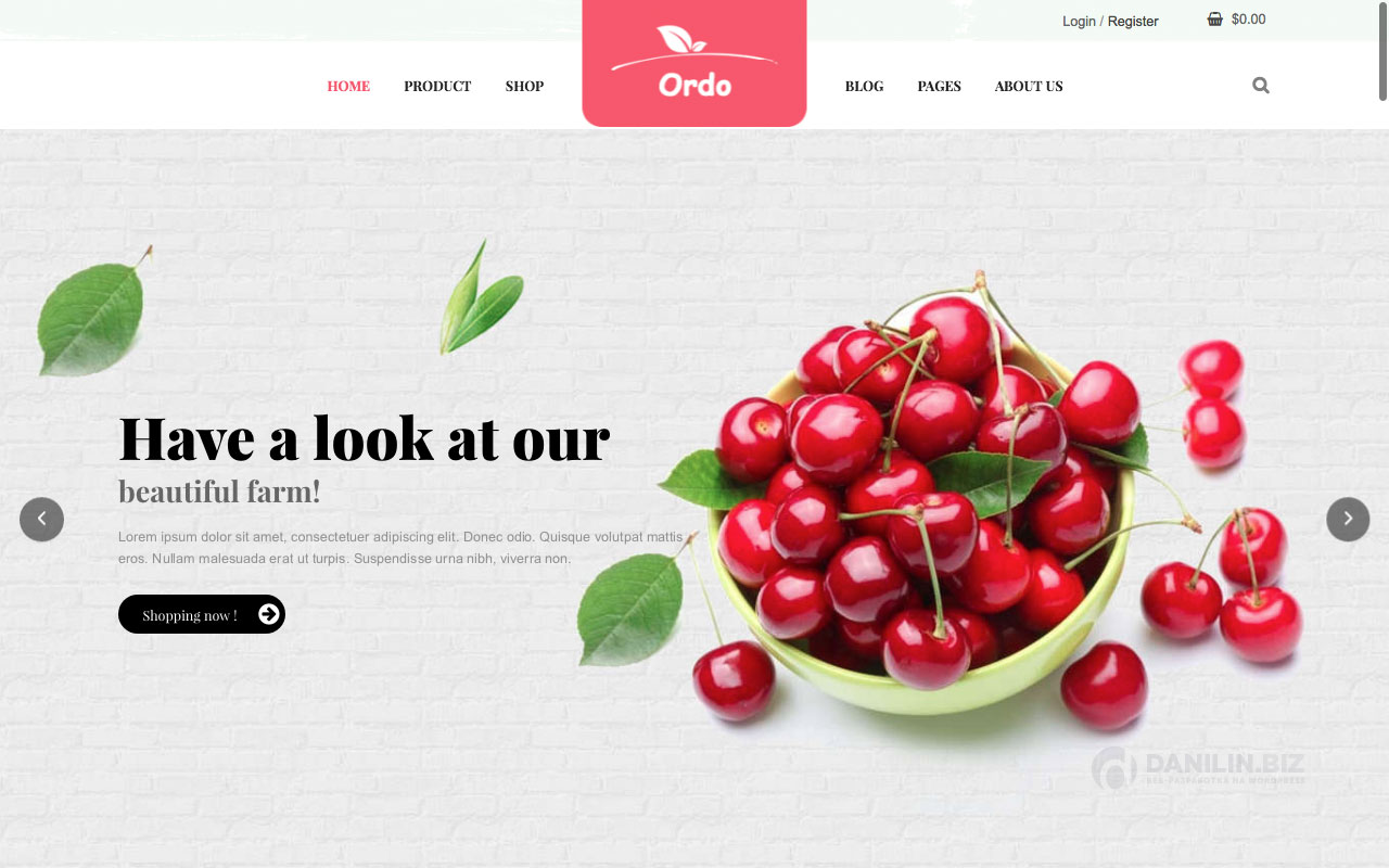 Шаблон интернет-магазина на Вордпресс: Ordo — Organic Responsive WooCommerce WordPress Theme