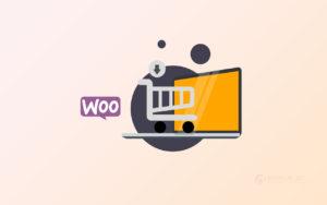 14 полезных сниппетов для интернет-магазинов на Вукоммерс