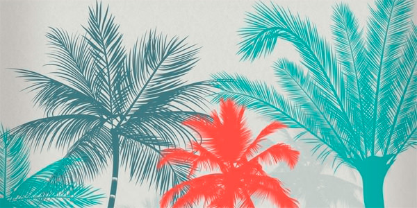 Palm Trees Brushes for PS