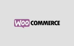 Как ограничить продажу товаров в одни руки в WooCommerce