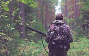 10 лучших Вордпресс шаблонов на тему оружия и охоты