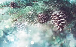 Рождественская подборка: 10 лучших графических шаблонов